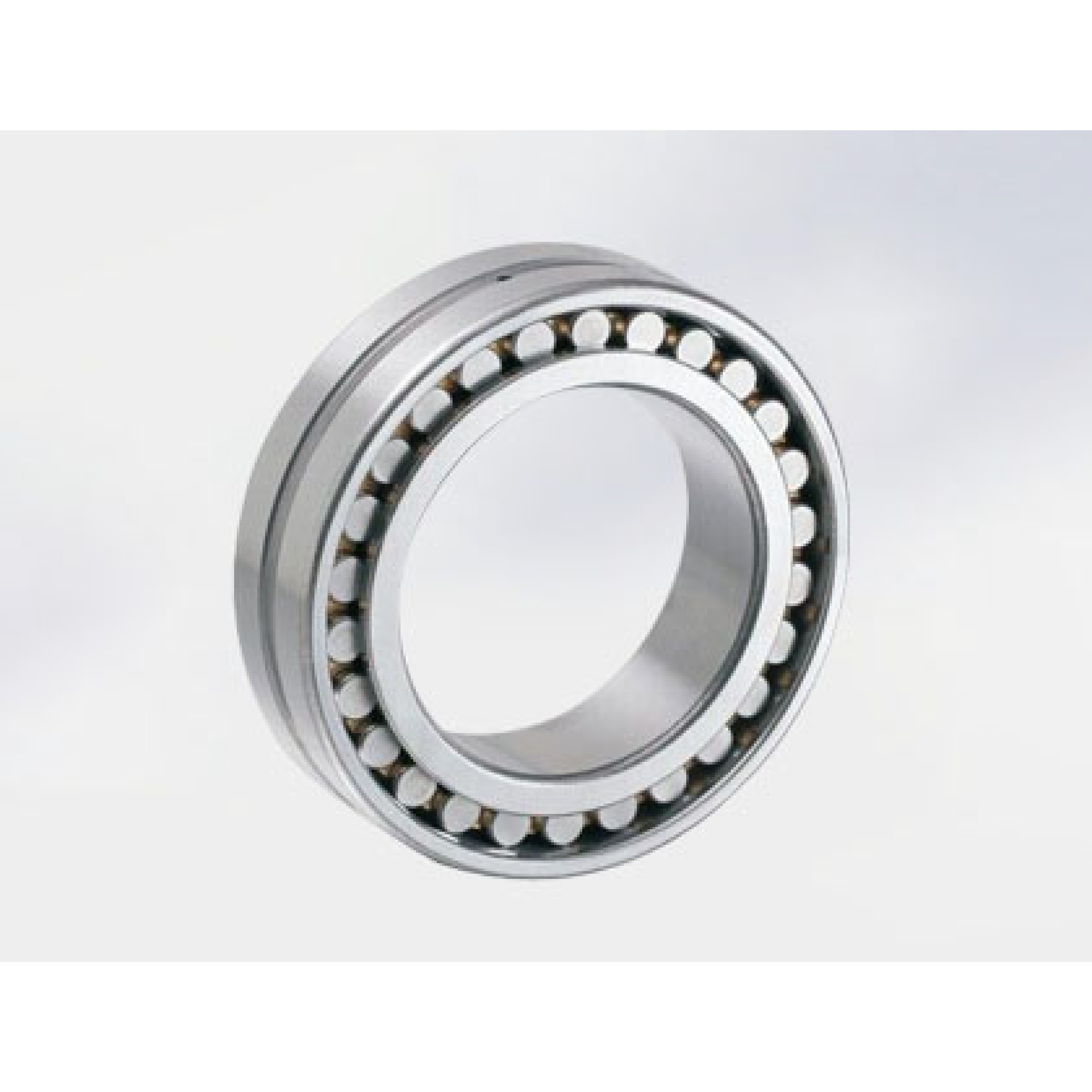 Double Row Cylindrical Ceramic Roller Bearings