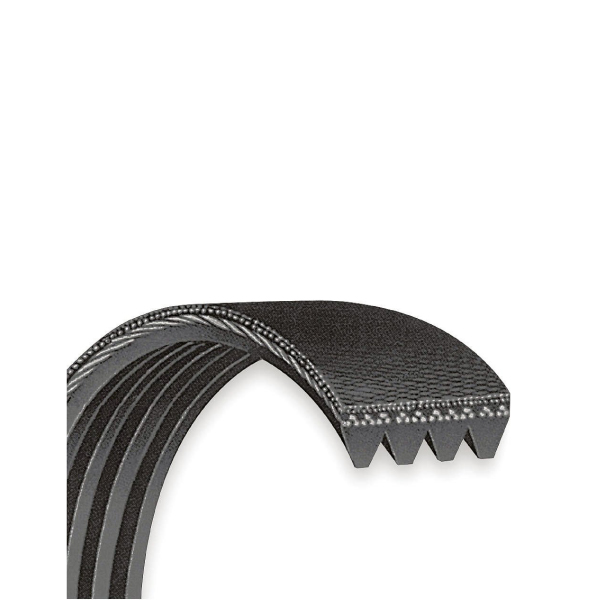 Raw Edge V-Belts